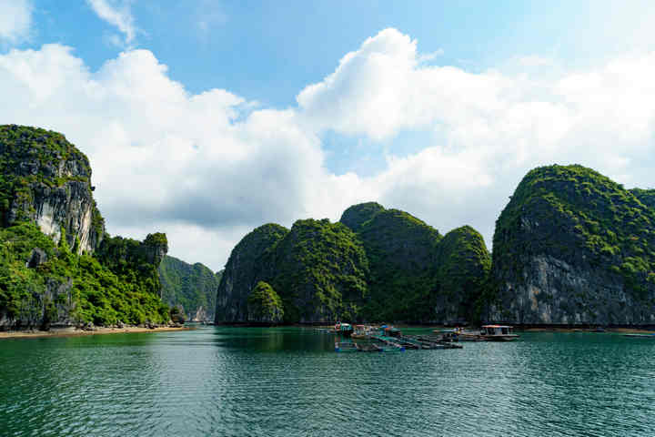 What to eat in Cat Ba Island