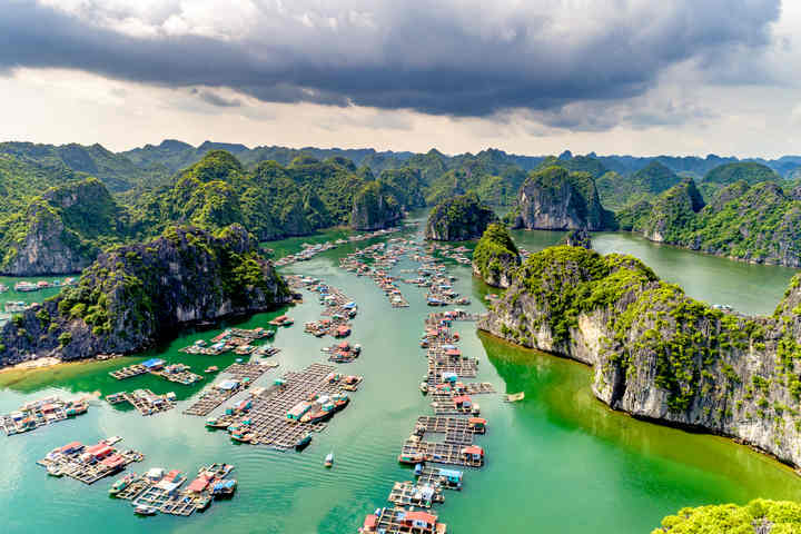 Halong Bay cruise in 2020: Top 15 cruise you must know
