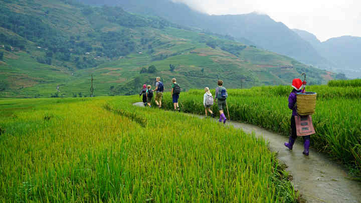 Sapa Trekking: 9 Hiking Destinations In Sapa, Vietnam