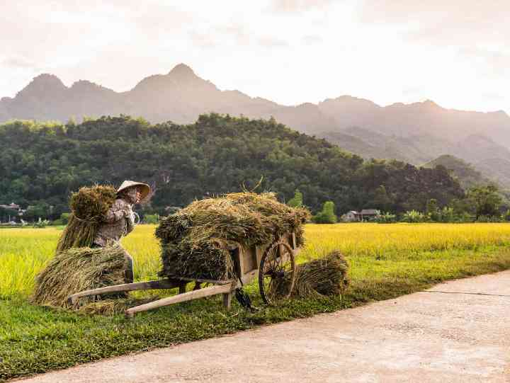 Mai Chau, Vietnam 2020 - The Essential Travel Guide in Mai Chau