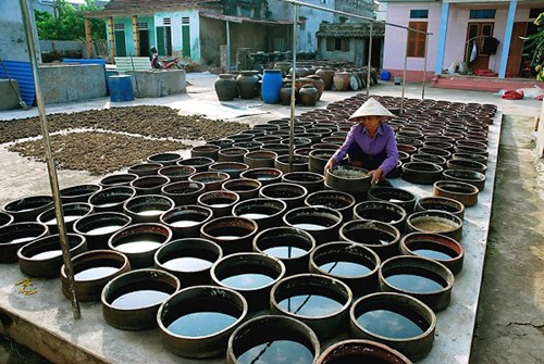 Located in Lien Chieu District in the central city of Da Nang approximately three kilometers from the foot of the Hai Van Pass, Nam O is one of Vietnam's oldest and most famous fish-sauce making villages with a history of more than 400 years.