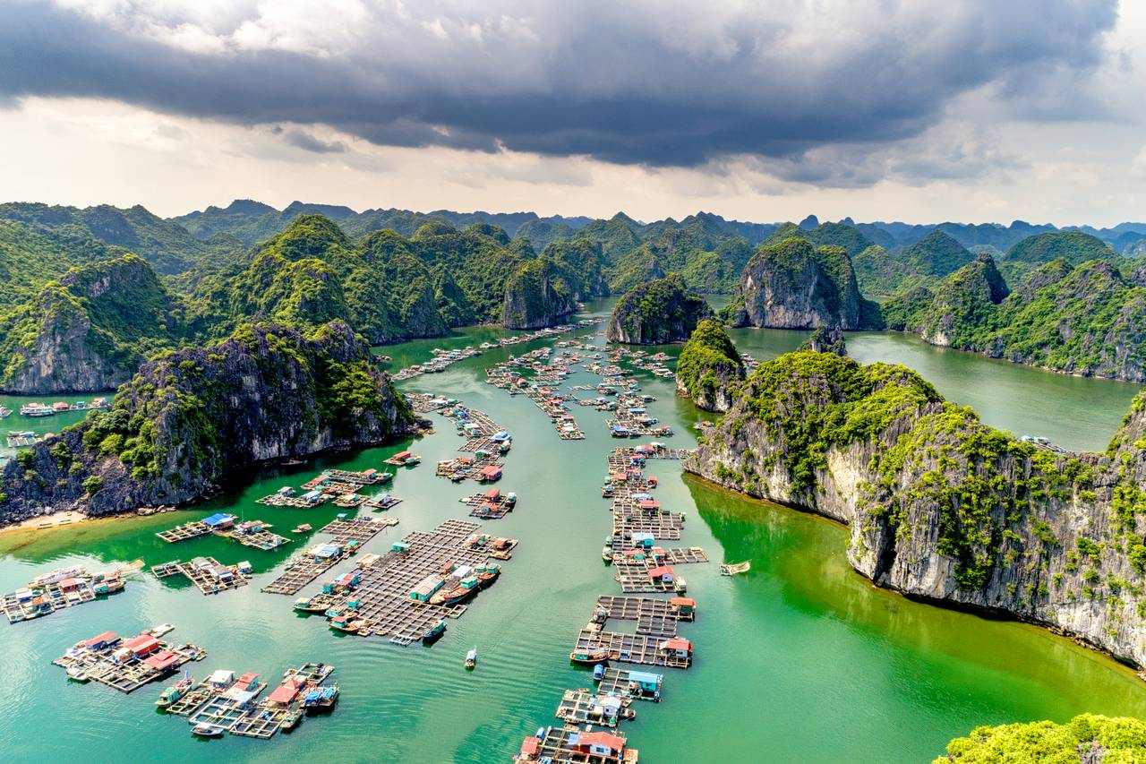 Halong bay souvenir - Things to buy in Halong bay