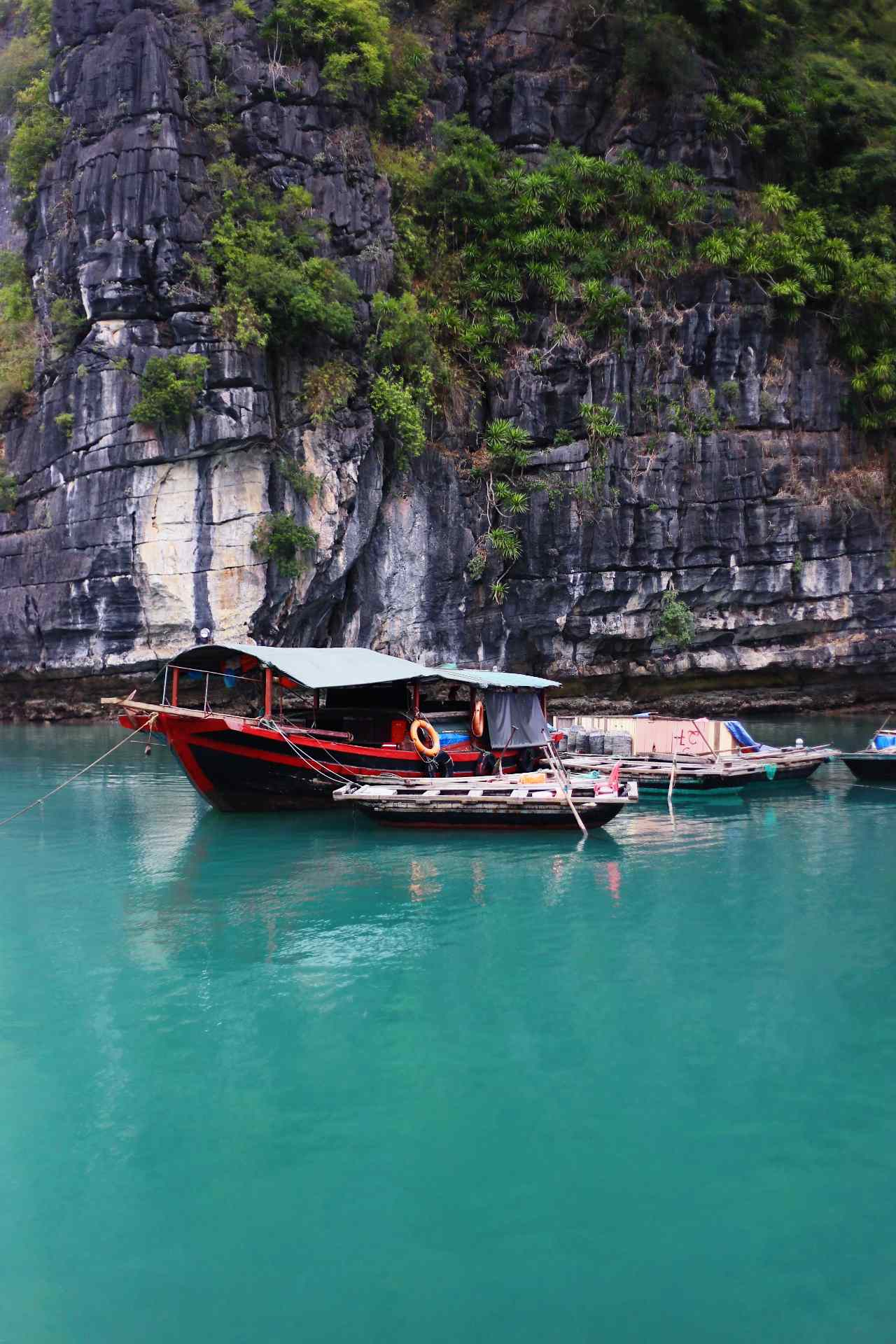 Halong seafood - Things to buy in Ha Long