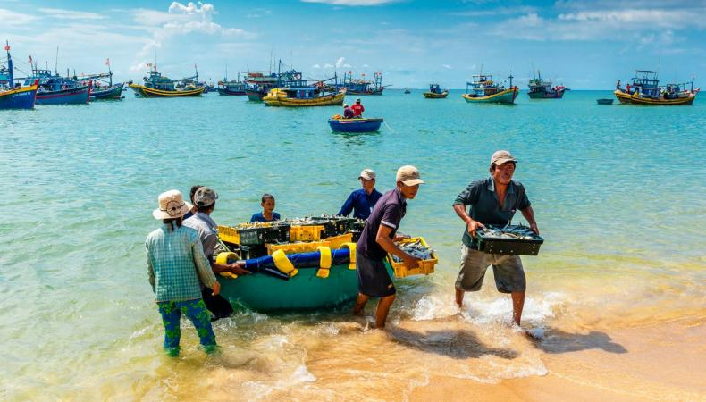Vietnam Tour 2021: 10 steps to choose a perfect tour operator